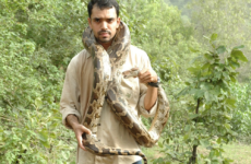 Photo of Sanjiv Gohil with a snake