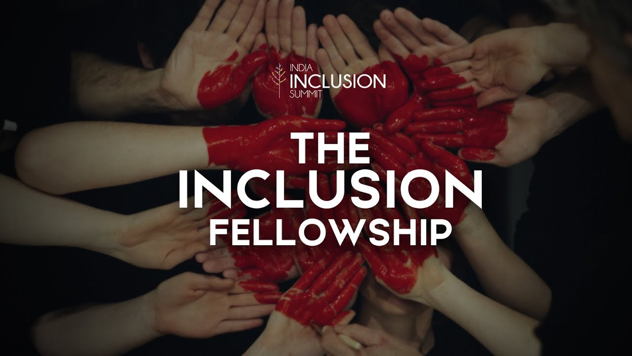 The Inclusion Fellowship Crowdfunding Campaign at IIS 2017